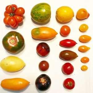 tomates-hortelao-oestes